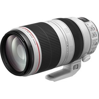 Product image of Canon EF 100-400mm  IS II USM Lens